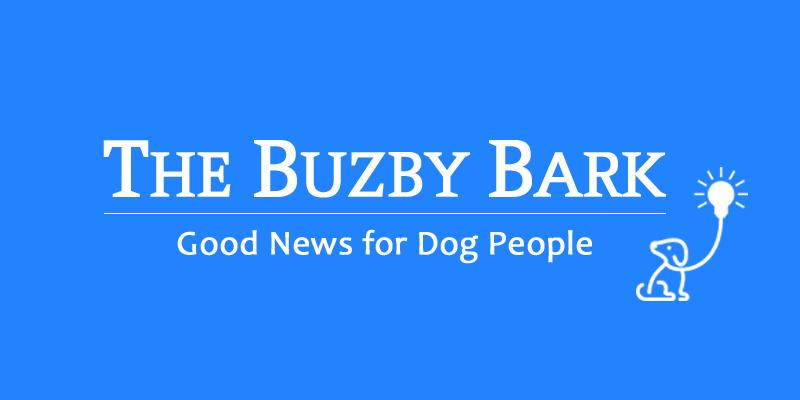 The_Buzby_Bark