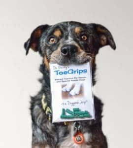 dog holding package of ToeGrips® dog nail grips with hind end weakness