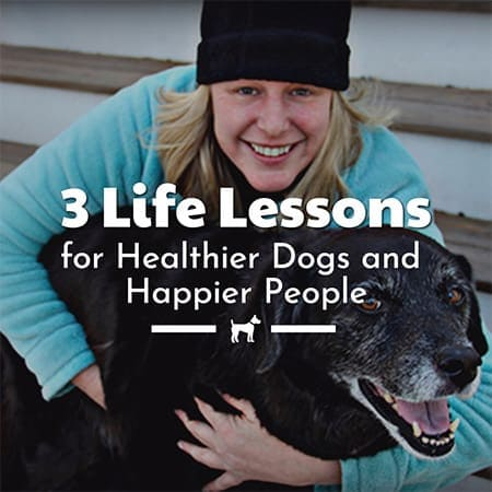 3 Life Lessons For Healthier Dogs and Happier People