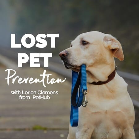 Lost Pet Prevention & Preparation with Lorien Clemens from PetHub