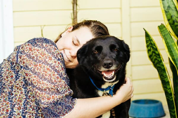 Senior Labrador mix, sitting on the porch being hugged by female owner, photo