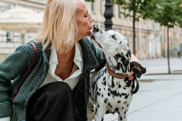 Dalmation licking his owners face while walking down a city street, photo