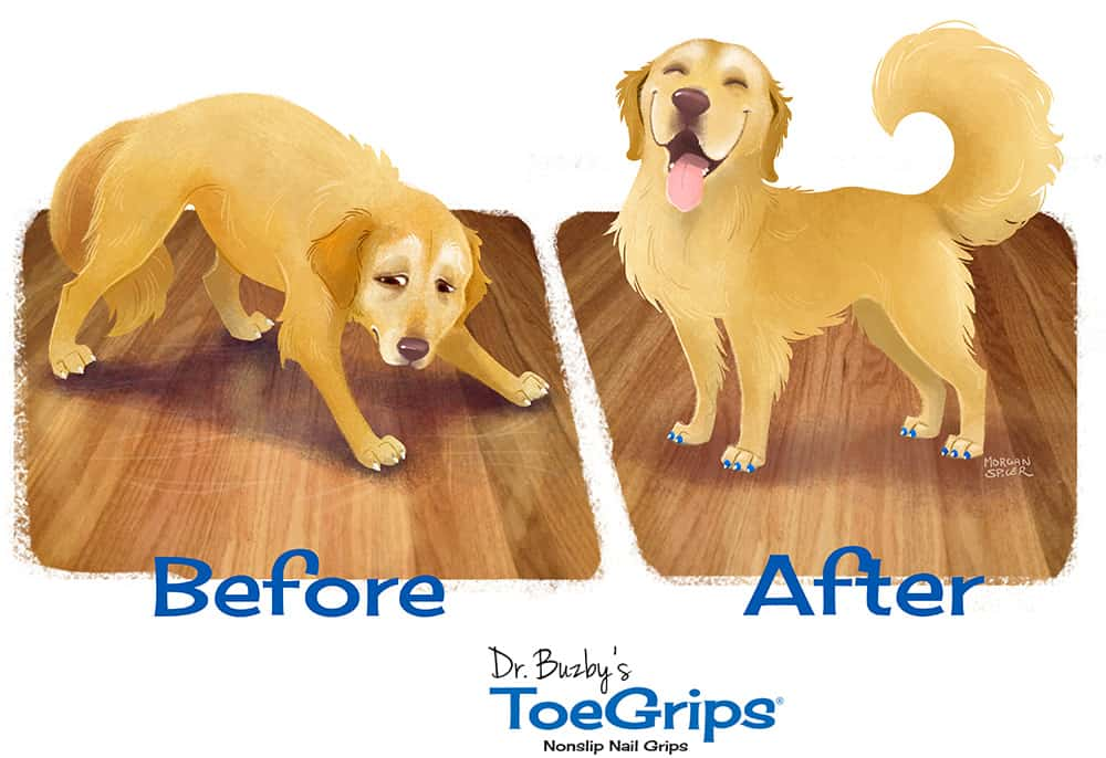 Before and after of an unsure dog without ToeGrips and the same dog now smiling and wearing ToeGrips nail grips for dogs
