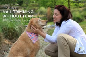 dr buzby's dog nail trimming without fear master course