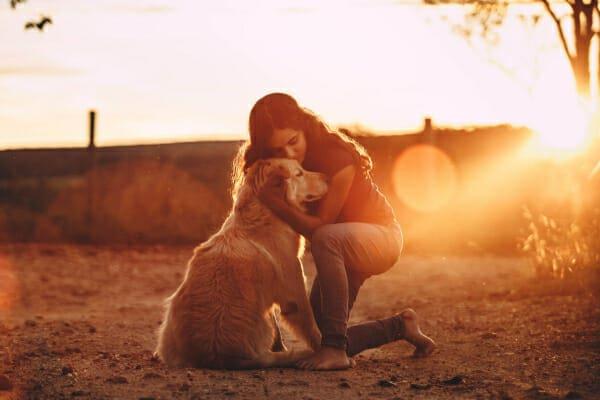 Women hugging her Golden Retriever at sunset, photo