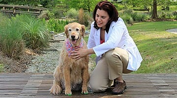 Integrative veterinarian Dr. Julie Buzby kneeling next to a senior dog who is wearing green ToeGrips
